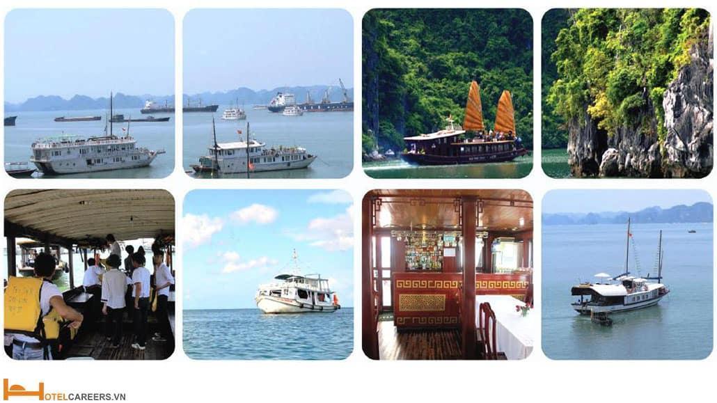 Tiêu chuẩn VTOS nghiệp vụ tàu thuỷ du lịch